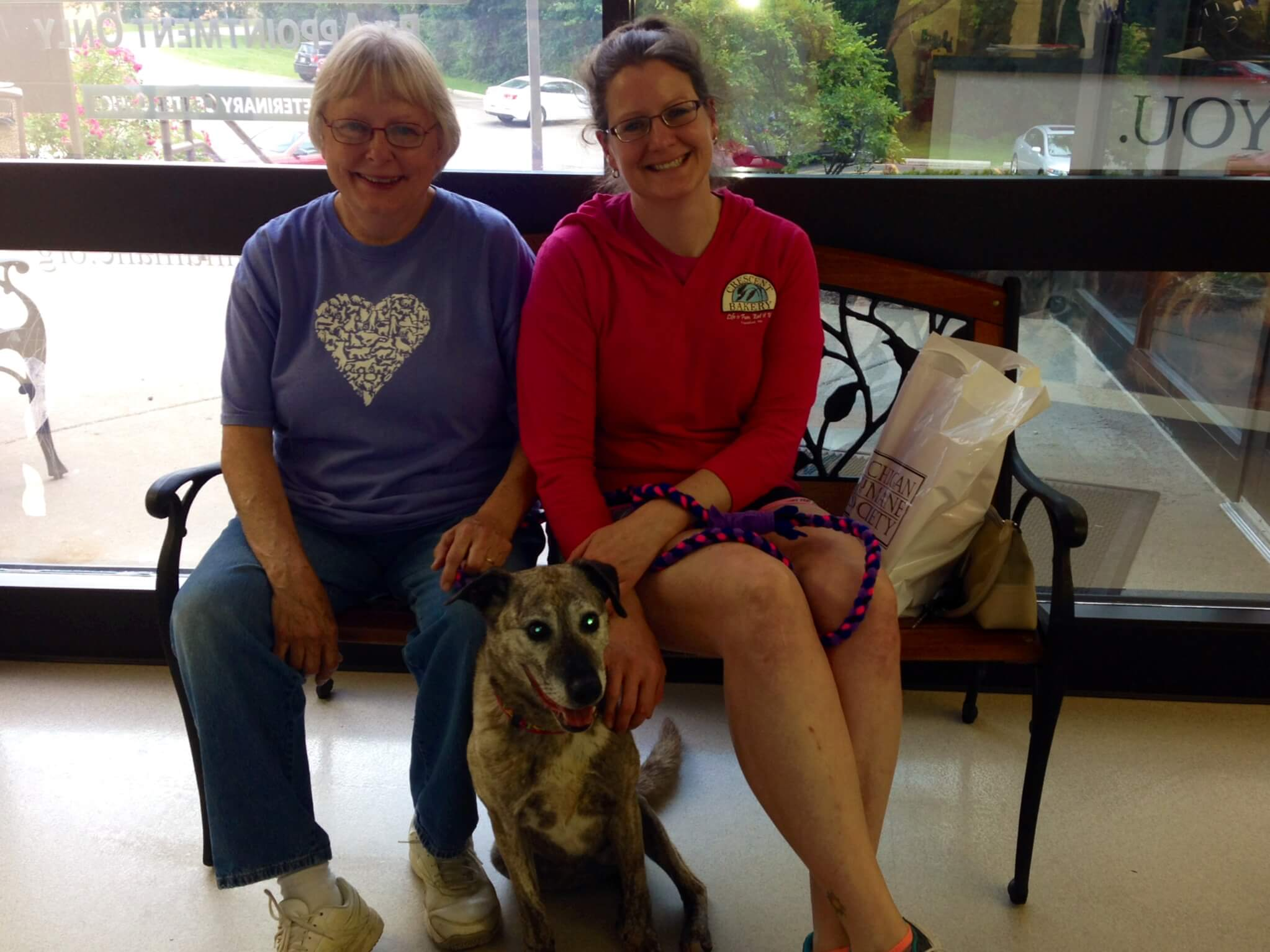 Senior dog Miss Brittney had been with us for quite a while, and found her perfect home thanks to our AARP partnership!