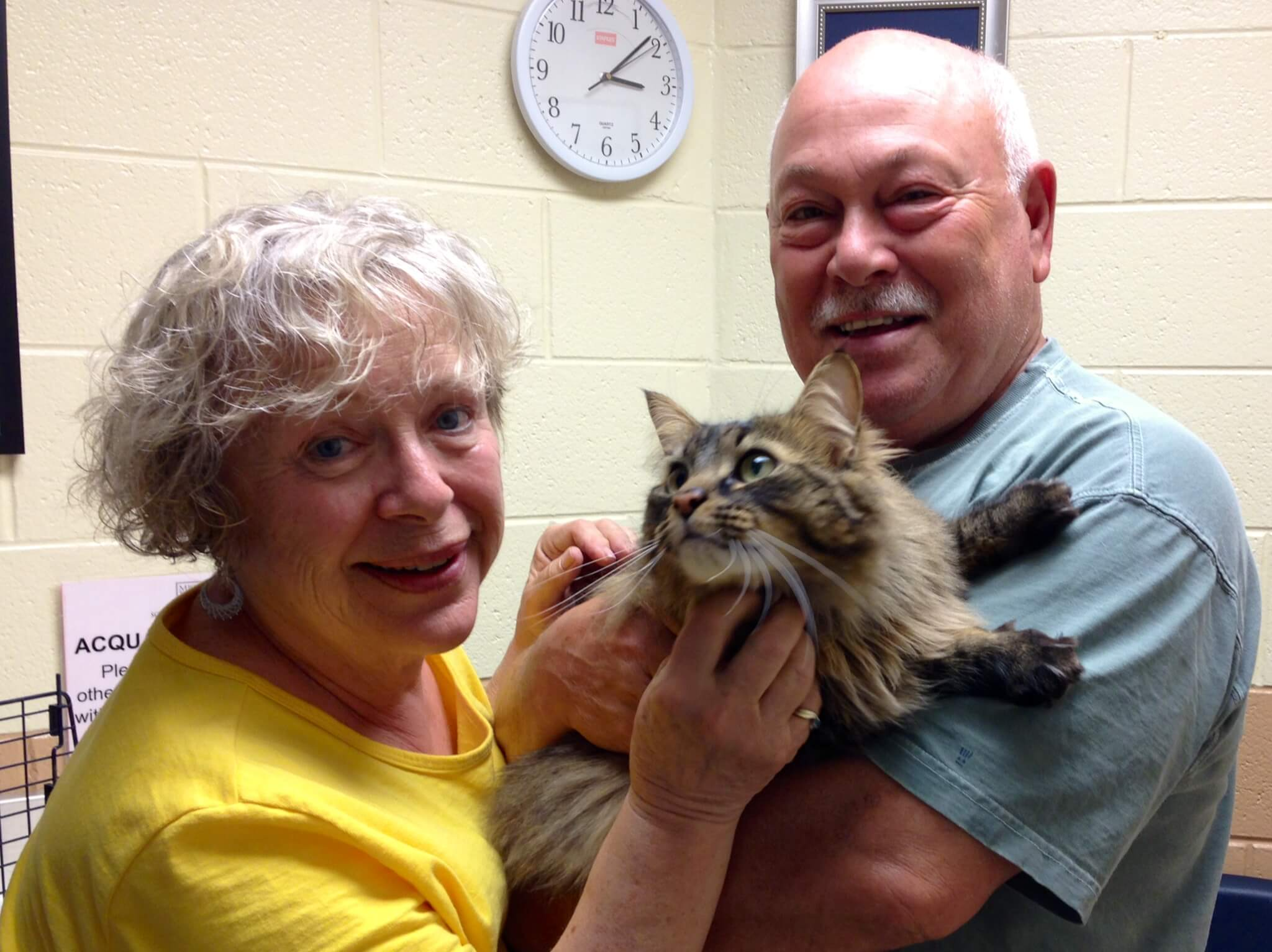 """Tasha and her new parents are the """"purrfect"""" match!"""