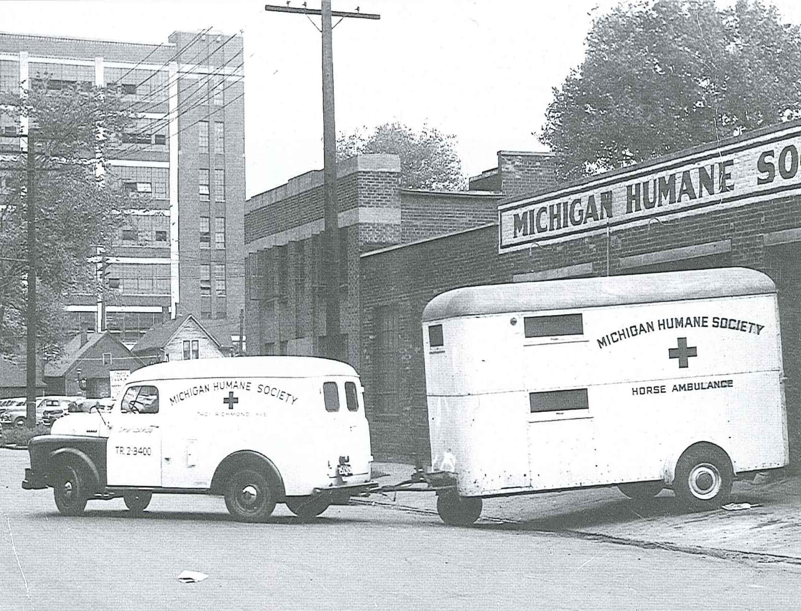 The Detroit Center for Animal Care, decades ago. This is the same building we currently reside in that will be replaced by our new, state of the art facility next year.