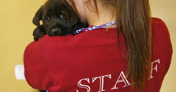 Careers - Michigan Humane Society