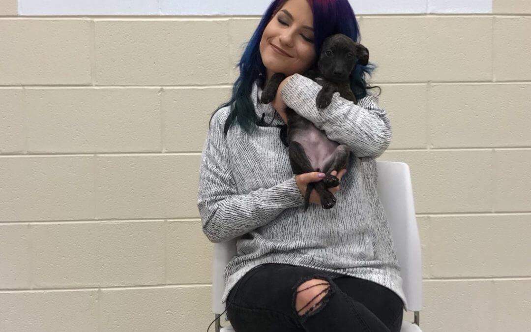 98.7 AMP Radio's Julia Picks Dogs' Celebrity Lookalikes