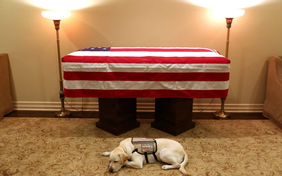 George H.W. Bush's Service Dog Laid Next to Casket