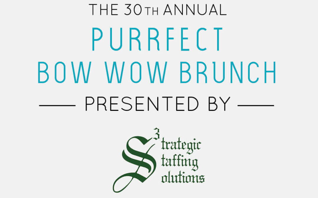 MHS Purrfect Bow Wow Brunch Presented by S3