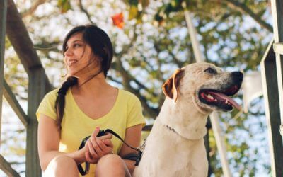 Dog Personalities are Influenced by Their Owners According to MSU Study