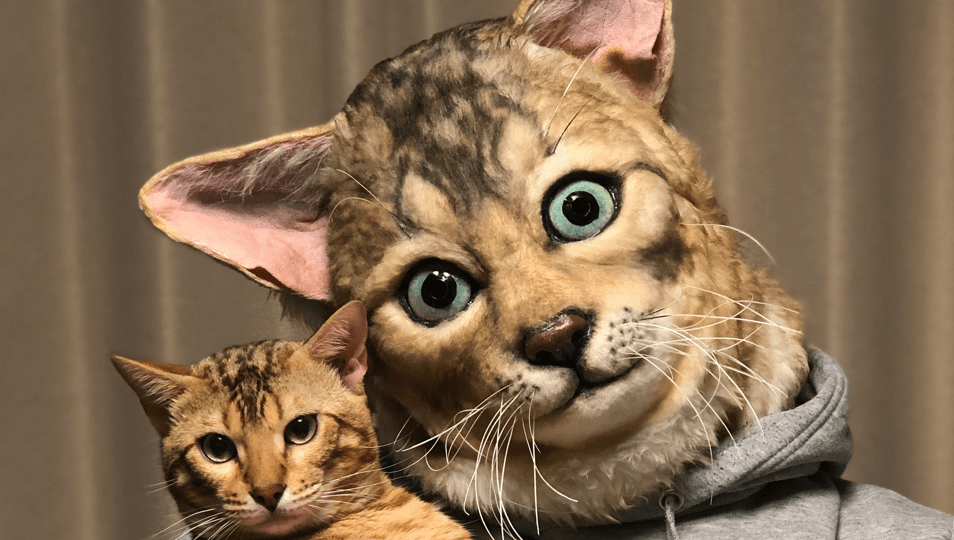 Wear a Realistic (And Terrifying) Version of Your Cat's Face