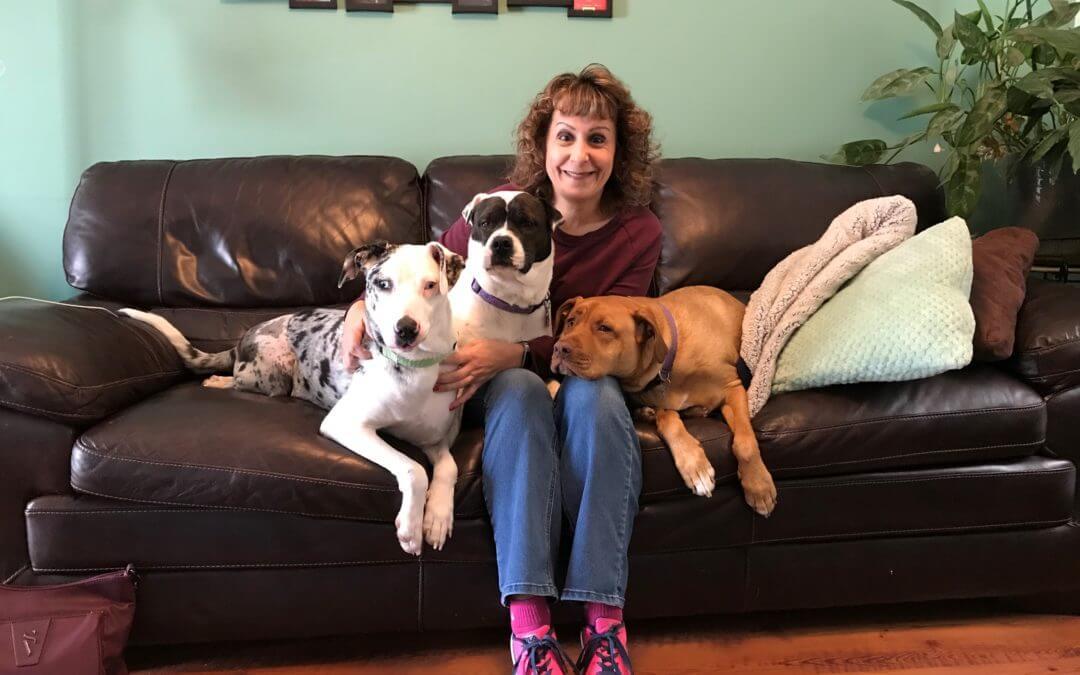 MHS Foster Volunteer Highlight: Sue Achrem