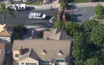 Over 130 Dogs Found Inside California Mansion