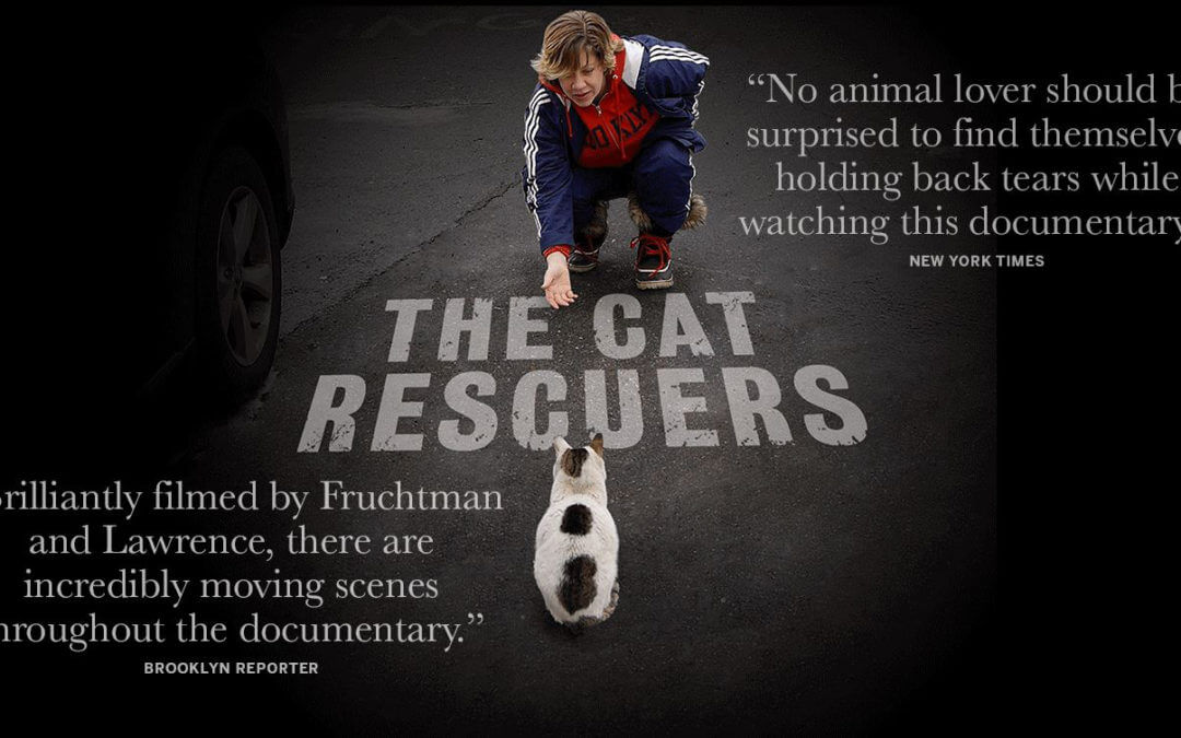 'The Cat Rescuers' Screenings at Cinema Detroit