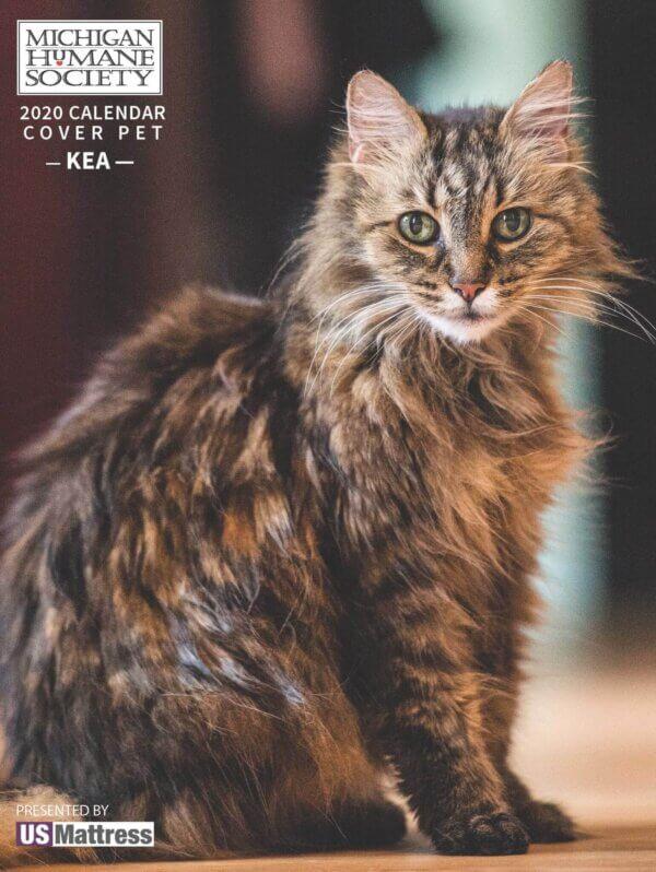 MHS Pet Calendar