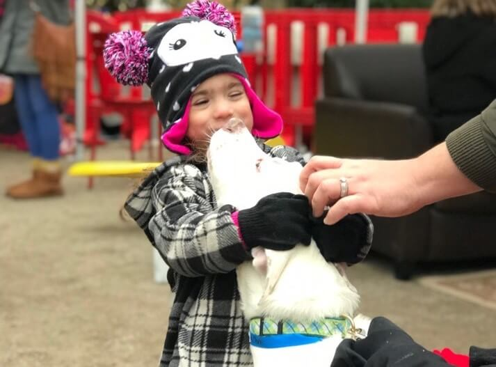 Dog kisses child during Michigan Humane Society Giving Tuesday 2018 event.