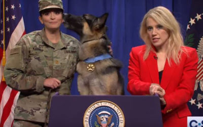 Watch Hero Dog in SNL White House Sketch