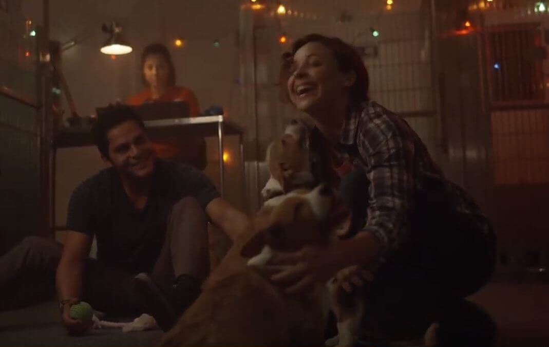 Shelter Animals Receive Holiday Love in Subaru TV Commercial