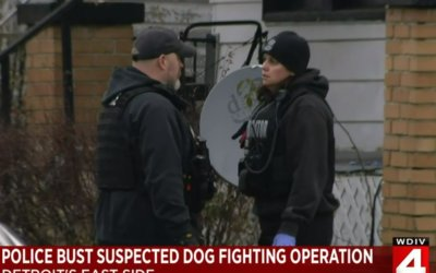 Michigan Humane Society, Detroit Police Rescue 11 Dogs From Dog Fighting Ring