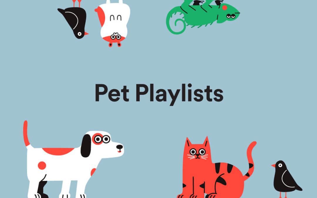 Spotify pet playlist.