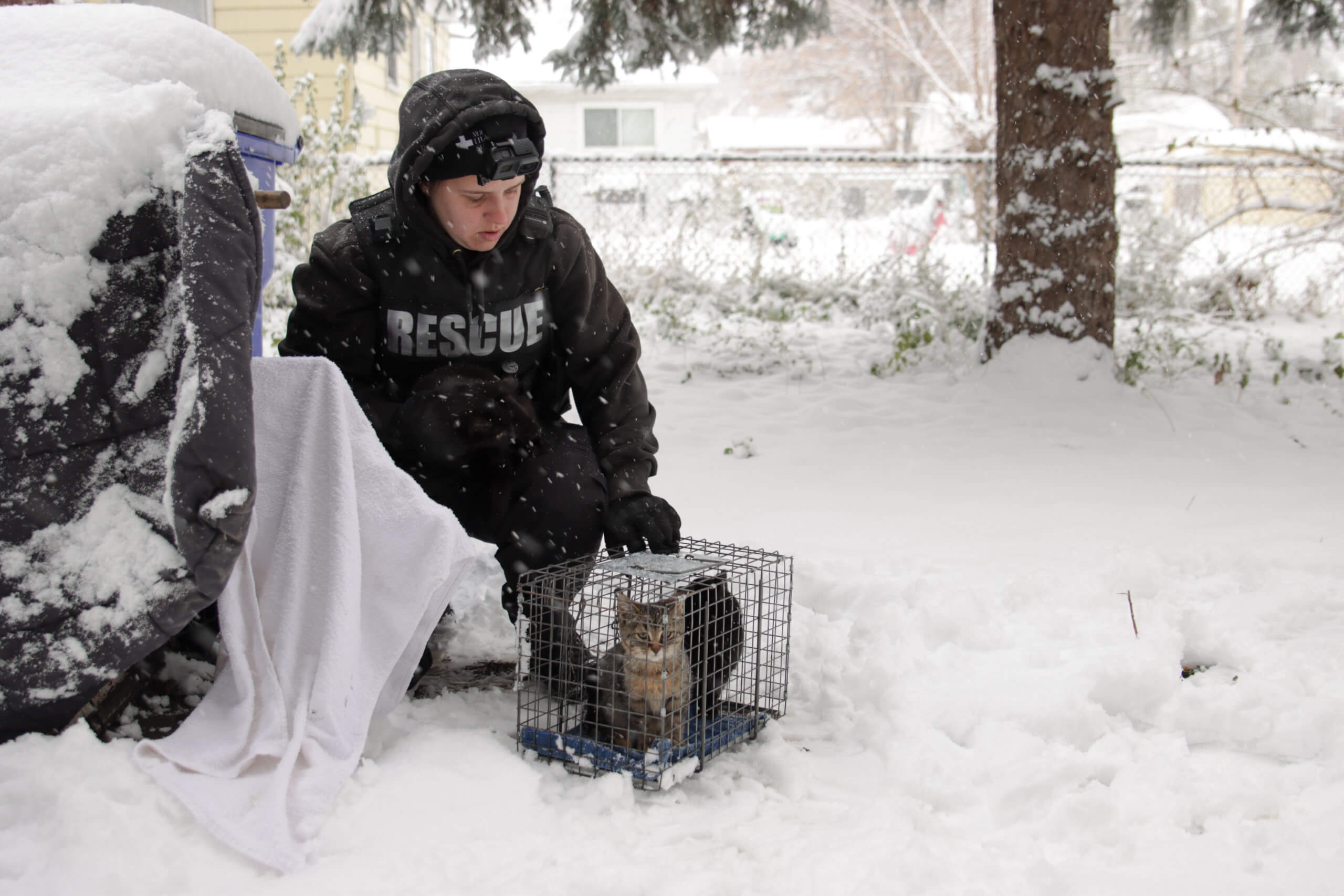Michigan Humane rescue team during the winter.