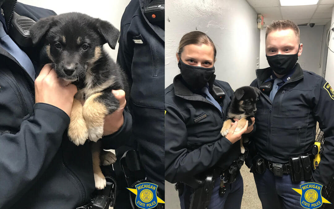 Michigan State Police and puppy