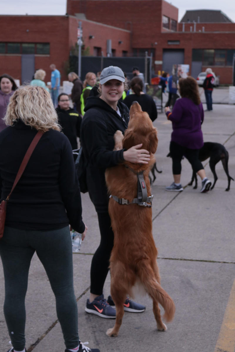 Participants attend the first-ever Michigan Humane Society Giddy Up Pup.